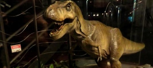 Lamerica riscopre il tremendo fascino del tirannosauro