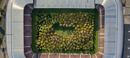 stadio calcio foresta opera