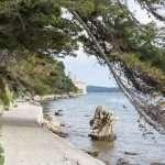Innamorati dell'isola di Arbe
