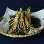 Ginseng Coreano e i suoi benefici per il corpo e la mente