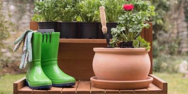 Materiali utili per piante sane